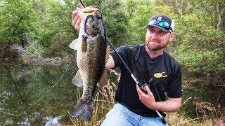 Video Bank Fishing Ponds for Bass MP3, 3GP, MP4, WEBM, AVI, FLV Oktober 2018