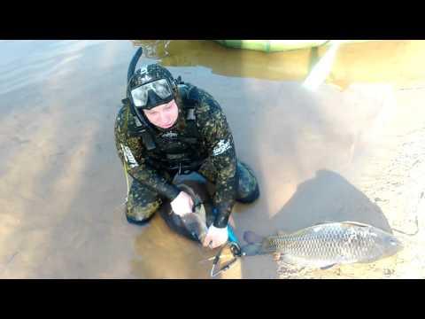 рыбалка в щелково на клязьме