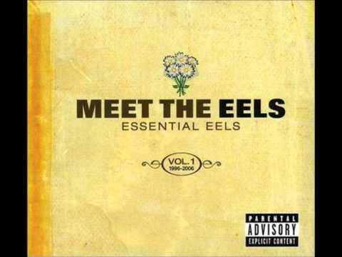 Love of the Loveless (Song) by Eels