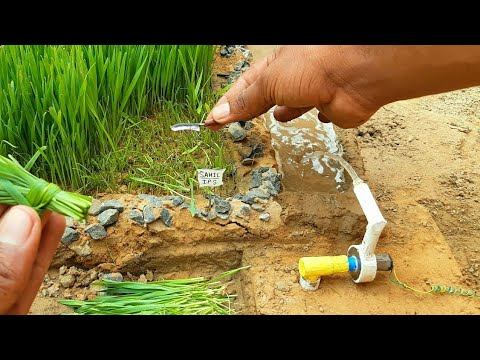 wheat water pump science project |  awesome motor | #2