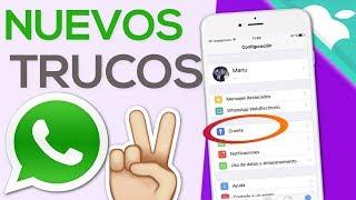 Video WHATSAPP EN IPHONE | +10 TRUCOS QUE DEBERIAS SABER MP3, 3GP, MP4, WEBM, AVI, FLV Oktober 2018