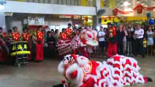 Barongsai.3gp