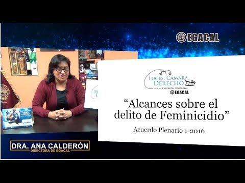 Programa 49 - Alcances sobre el delito de feminicido - A.P. 1-2016 - Luces Cámara Derecho - EGACAL