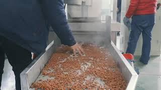 Dry Dog Cat Food Making Machine youtube video