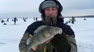 секреты рыбалки весенняя ловля спининнг РСН