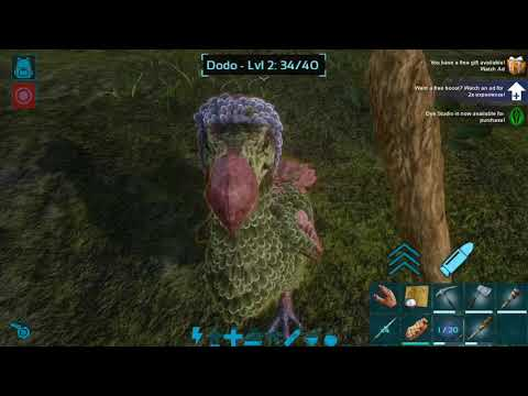 How to tame a dodo in ark Mobile