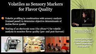 Investigating Fruit Volatile Metabolism: Toward Improving Crop Flavor Quality