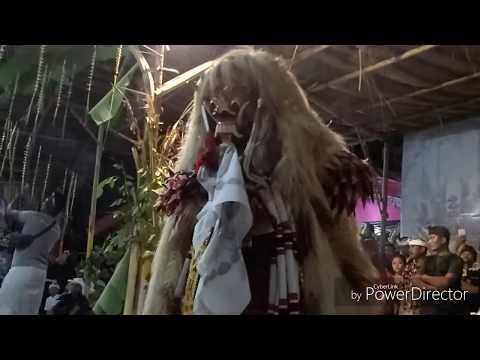 Calonarang, rande, barong ngamuk di purwoharjo, banyuwangi