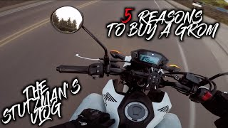 5. Honda Grom ONE YEAR Review! | 5 Reasons to BUY a Honda Grom!