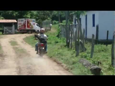 Cachorro anda de moto em carmo do cajuru- mg