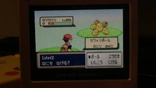 Hello all! As always with safari shinies, the comments will contain spoilers, so if you don't want to be spoiled, watch out! I found this shiny earlier this morning at like 1 am, and I'm really happy I managed to end this long hunt! Safari encounters in 3rd gen are crazy fast, as you all know, so I was able to do all these encounters in only 2 days! Did she stay after such a long hunt, or did she leave me? Watch to find out, aheee!