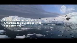 Cambio climático en la Antártica