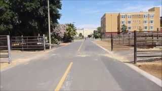 Davis (CA) United States  city images : Biking through Davis CA May 9 2013