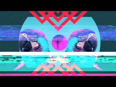 Bassnectar & Gnar Gnar feat. Born I Music - I'm Up