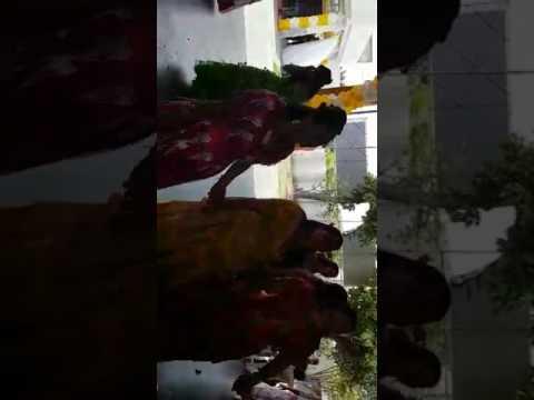 Casamento de cigano em Camaçari