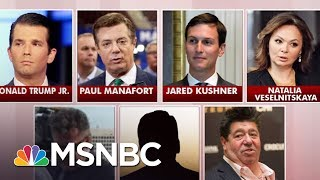President Trump's legal team continued over the weekend to say nothing happened in Donald Trump Jr.'s meeting with a Russian lawyer in 2016. The panel ...