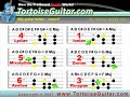 Tortoiseutube - Major Scale Modes: Part 3