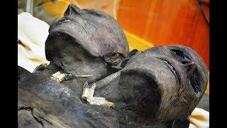 Conoce la enigmatica historia de Kap Dwa , un gigante REAL de mas de 3.5 metros y dos cabezas Únete a nuestras Redes Sociales  Contacto: Cercano.paranormal@gmail.comFacebook: https://www.facebook.com/cercanoparanormalGrupo en Facebook: https://www.facebook.com/groups/zonaparanormalveracruzMis Cuentas Personales Facebook:  https://www.facebook.com/Jaguar-Paranormal-287105631679282Twitter:  https://twitter.com/Luzardo_Jaguar