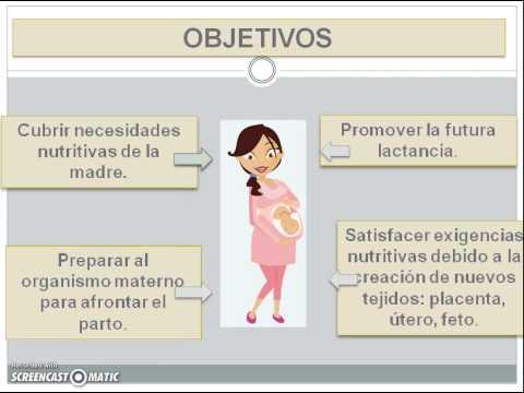 Alimentacion durante el Embarazo