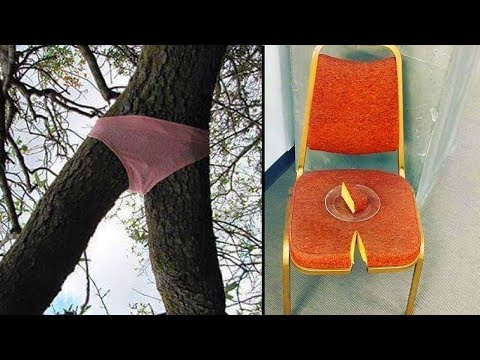 Funny pics - Strange Sights That Will Make Anyone Raise An Eyebrow  Funny Pictures