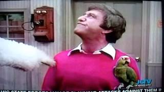 Description: Soupy Sales buys a parrot that can recite Shakespeare, but looses a bet with White Fang. I do NOT own any rights to...