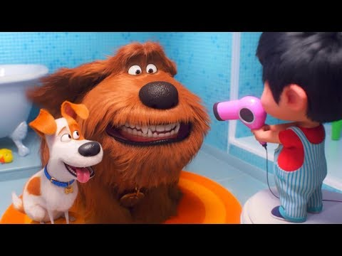 Hollywood Movies in Hindi Dubbed 2019 - The Secret Life oF Pets