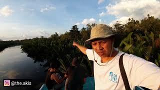 Nonton TANJUNG PUTING #1 Nginep di pedalaman hutan kalimantan Film Subtitle Indonesia Streaming Movie Download