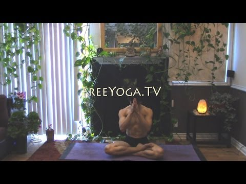 45 Minute Hatha Yoga Class for Core and Upper Body strength, by Stephen of FreeYoga.TV