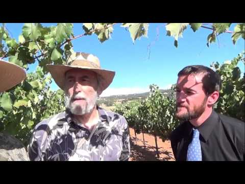 Helwig Winery, Shenandoah Valley Ca