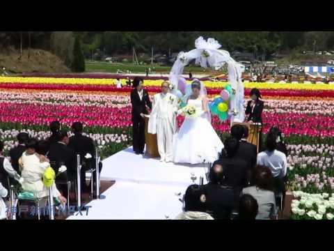 チューリップ祭り会場で結婚式