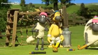 Video shaun the sheep championsheeps 11 episodes MP3, 3GP, MP4, WEBM, AVI, FLV Juli 2018