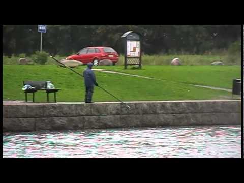 рыбалка в россии нетрадиционный матч