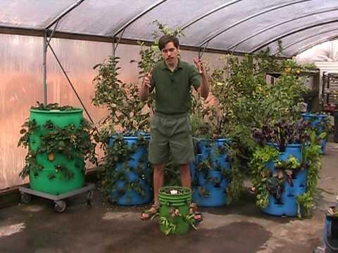 3-D Vertical Barrel Gardening – A Striking Use For Used Barrels