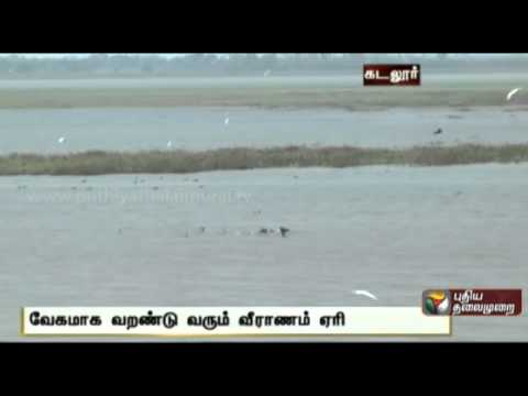Veeranam Lake, which dried up: a problem of drinking water to Chennai