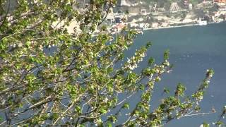 Riva Di Solto Italy  city photos : Panorama da Fonteno, sopra a Riva di Solto, Lago d' Iseo.