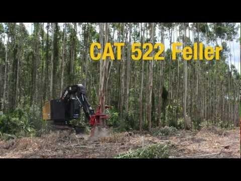 Máquinas de Coleta de Madeira Caterpillar: Feller Buncher CAT 522