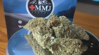 Mojito Marijuana Monday by Urban Grower