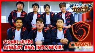 Video Indonesia was Surprised by Estes & Belerick Pick of Cignal Ultra | Team Flash vs Cignal Ultra MP3, 3GP, MP4, WEBM, AVI, FLV Juni 2019