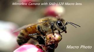 video thumbnail SAD-N728 Tele & SAD-M320 Macro Lens For Olympus OM-D & PL Seires youtube