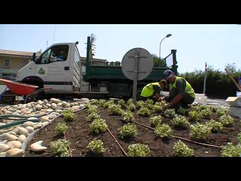 Jardinier paysagiste comment devenir jardinier paysagiste for Jardinier paysagiste