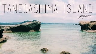 Tanegashima Island Japan  City pictures : Keeks in Tanegashima, Japan 2014