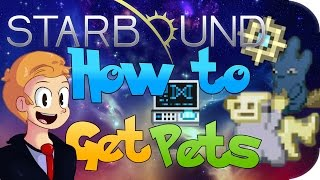 How to capture your very own pets in #Starbound. It's rather easy. Click Here To Subscribe http://bit.ly/19ksM1a Starbound...