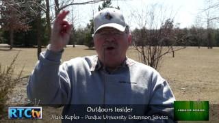 Outdoors Insider- Tree Pruning
