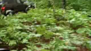 Yellow trail Twisted Trails Offroad Copemish MI