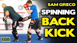 Tips for throwing a spinning back kick!
