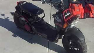 4. 2012 honda ruckus with few mods 50cc