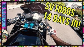 5. Suzuki SV1000 First impressions