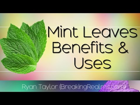 The Benefits of Mint Leaves! WOW!!!