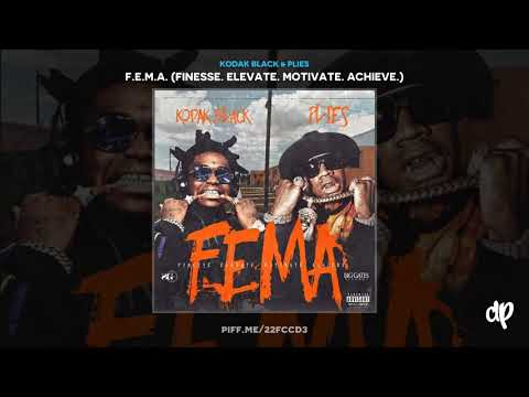 Kodak Black & Plies - Too Much Money [F.E.M.A]