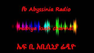 First Fb Abyssinia Radio Transmission On June 23 2012_x Part 3